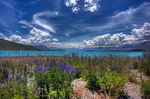 Incredible Lake Tekapo. Incredible New Zealand.