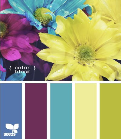 color bloom - A pinner said: This pale yellow for the kitchen.  Already have blue checked curtains with white lace ruffles in the dark blue. Then use some green touch.  Then use the other set of yellow, blues and green in the den.