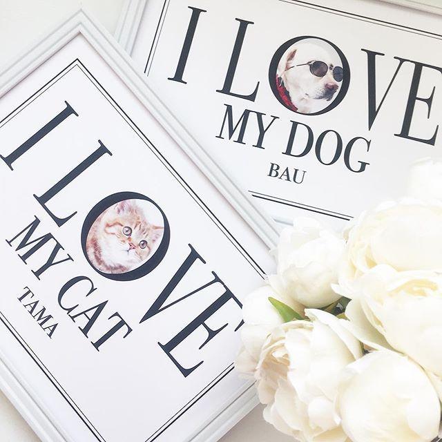 愛犬、愛猫のお写真でつくる♡うちの子インテリアポスター 販売開始しました🐈🐩...🎵 * 大好きな愛猫、愛犬のお写真を入れてお作りします୧(๑•̀⌄•́๑)૭✧ * ウェディング&マタニティフォトプロップスやガーランドの無料テンプレートも公開しております🌈✨詳細はプロフィール欄にてご確認ください🌟 * 🎁別途#プレ花嫁 様向けに #ウェルカムボード の#プレゼント企画 実施中です♡本日最終日です🌸詳細は #mandmpresent にてご確認ください◡̈⃝♩🎁 * * #ウェルカムスペース#結婚式#ハンドメイド#minne#creema#いぬバカ部 #癒し系#ilovemydog #愛犬#愛犬家#ペット#インテリア#インテリアポスター#犬#dog #dogstagram#猫#猫好き#愛猫#cat#catsagram #ねこ部 #にゃんこ