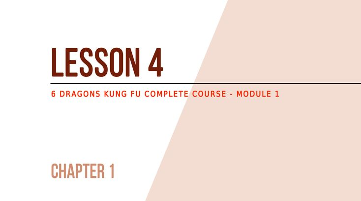 Lesson 4 – How to prepare for the effort A small preparation for Kung Fu In the next chapter we will discuss the foundation of 6 Dragons Kung Fu but, first, you need to prepare your body and your mind. At this point: We assume that you have obtained a positive medical opinion about the …