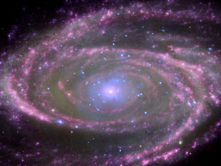 Black Holes Have Simple Feeding Habits At the center of spiral galaxy M81 is a supermassive black hole about 70 million times more massive than our sun.