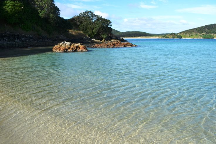 The clear waters of Matai Bay on the Karikari Peninsula on the North Island of New Zealand. All you need a towel, a book, some snacks and a gorgeously hot day!