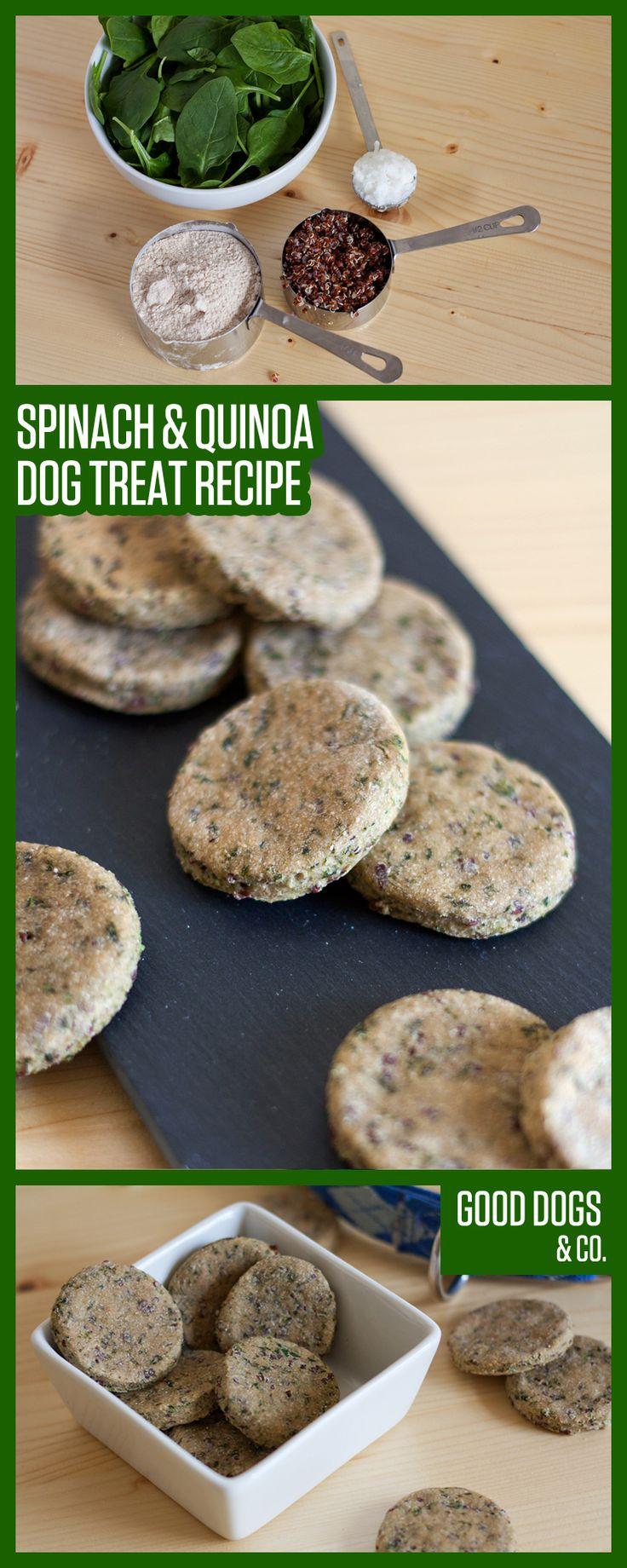This dog treat recipe is sure to please: quinoa and spinach dog treats pack extra nutrients for your dog's diet!