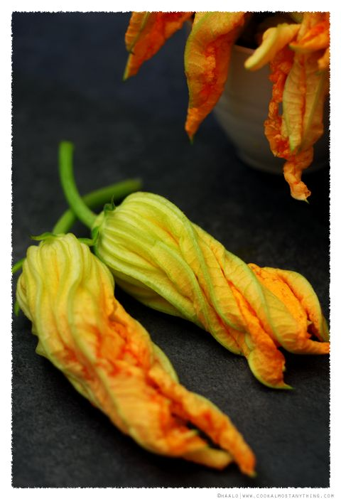 Baccala' Stuffed Zucchini Flowers from the blog Cook Almost Anything.  Most interesting.