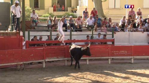 De nombreux villages camarguais organisent en ce moment des fêtes votives. L'occasion d'admirer durant ces courses des chevaux mais aussi des taureaux. Et chaque année, le public est au rendez-vous et ne se lasse pas de l'ambiance conviviale.