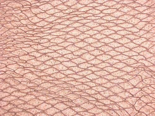 Decorative Fish Net 5' x 10'