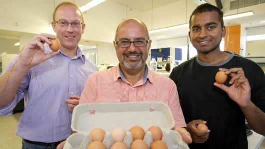 Hypoallergenic Eggs Are an Allergy-Friendly Future Food - pretty exciting!