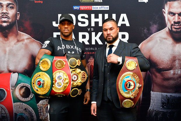 Joshua - Parker Heavyweight Championship Unification watch party
