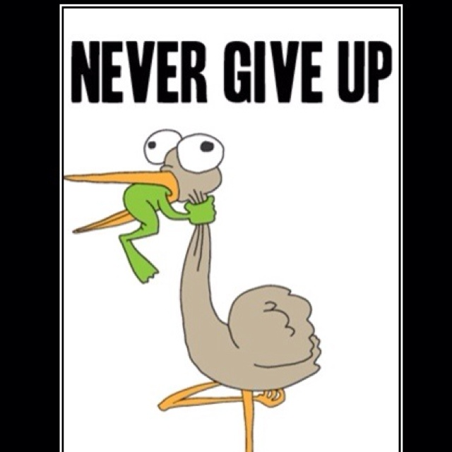 Never Give Up Quote Pic: Never Give Up Funny Quotes. QuotesGram