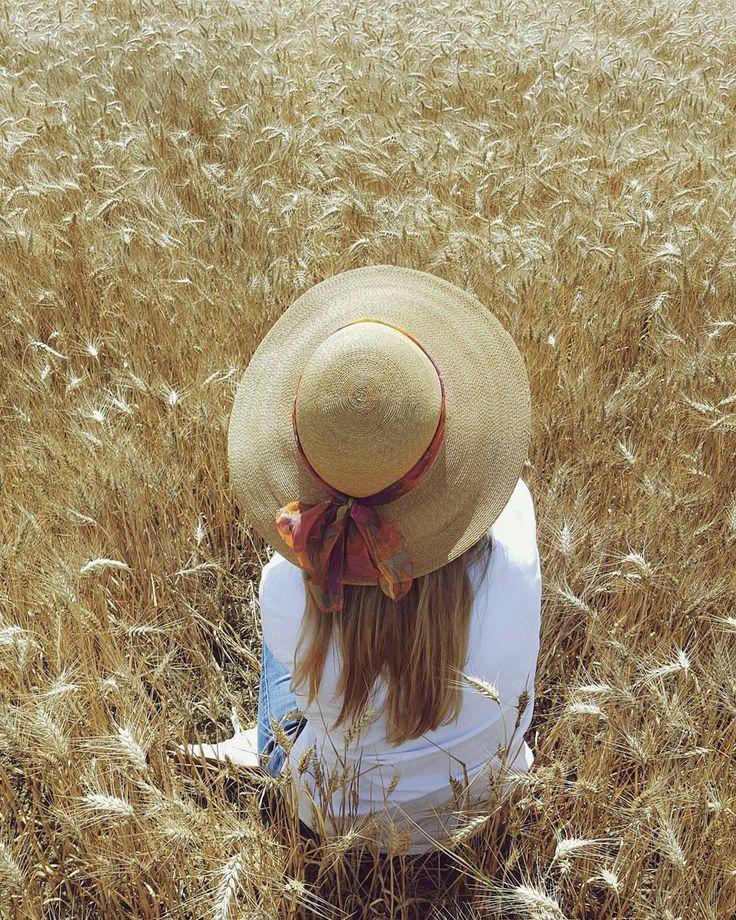 """""""Sorvola campi di grano  Distanze corte ora cadono  incontra i sogni di un estraneo  nelle sue mani ritrova il suo mondo"""". {Campi di grano - La fame di Camilla}"""