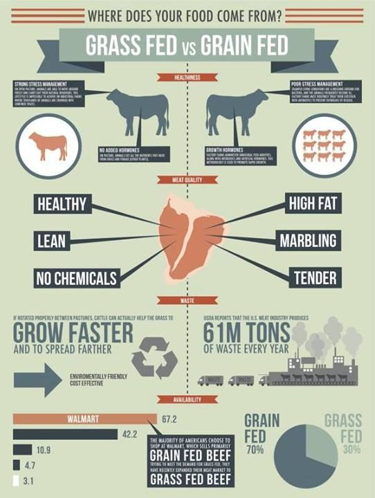 grass fed beef vs. grain fed beef from: Grass-Fed Revolution on Facebook