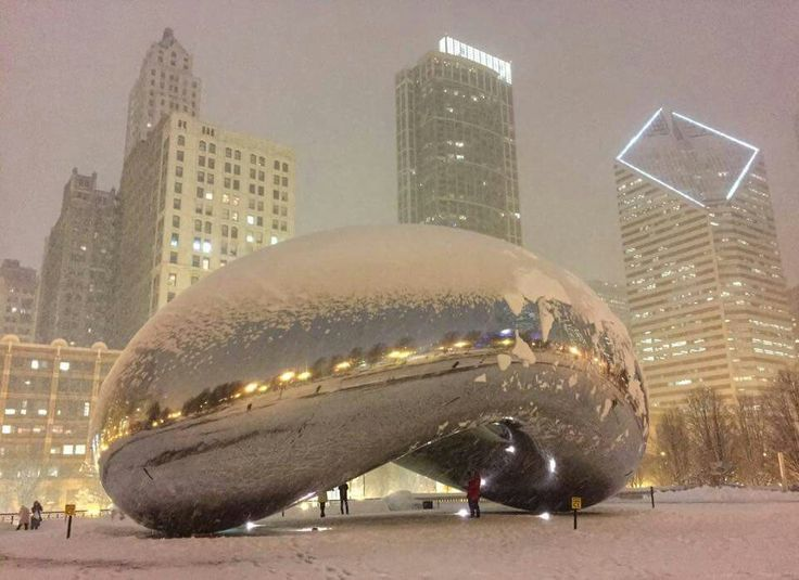 The Bean In The Winter