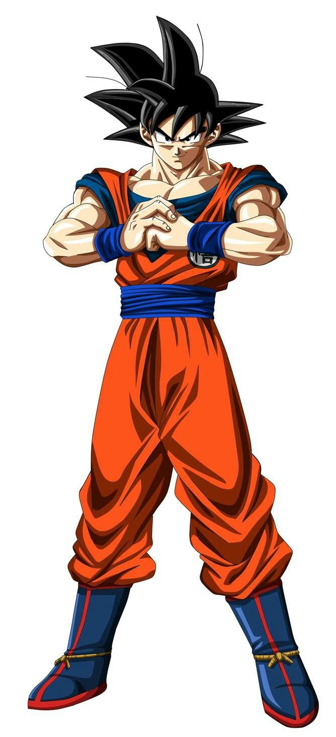 Goku ready for the tournament(manga colorised)