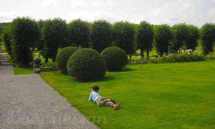 Wenngarns slottspark