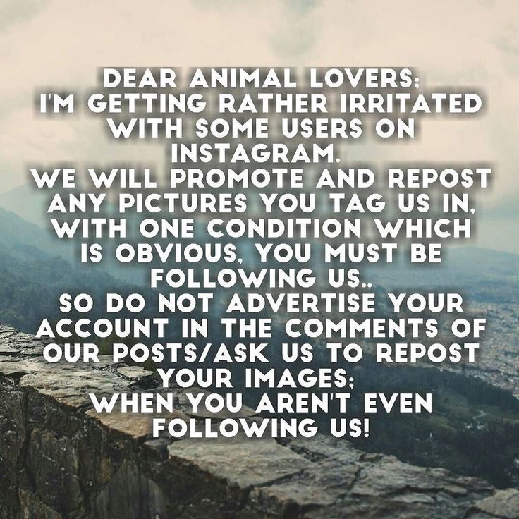 Dear Animal Lovers; I'm getting rather irritated with some users on Instagram.  We will promote and repost any pictures you tag us in with one condition which is obvious you must be following us.. So do not advertise your account in the comments of our posts/Ask us to repost your images;  WHEN YOU AREN'T EVEN FOLLOWING US!  http://ift.tt/2eo6NDt   We're looking for admins if you're interested private message our page!    Be positive and have sweet dreams  - thed4rkestrose  Daily Comment…