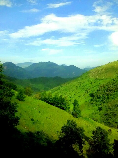 Road to Tamazunchale