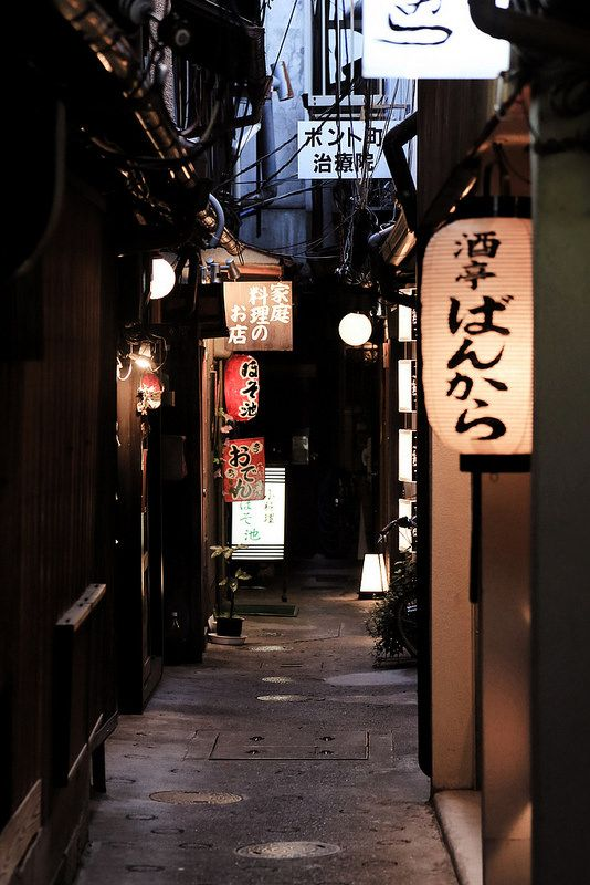 A view down an alley in Pontocho, Kyoto