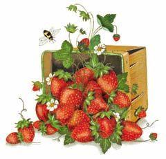 150-strawberries.jpg (240×230)