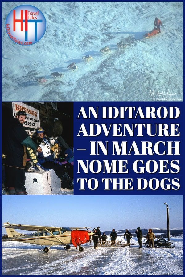 An Iditarod Adventure In March Nome Alaska Goes To The Dogs In 2020 Travel Humor Travel Fun Iditarod