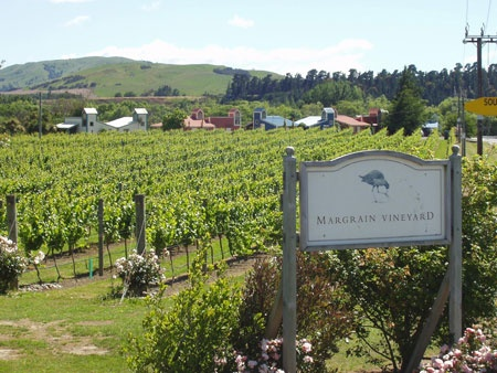 Margrain Vineyard: Set in the heart of the Martinborough vineyard area Margrain Vineyard offers a complete vineyard experience. From the outset, the company's aim has been to grow top quality grapes and produce wines of excellence. In pursuit of this goal no compromise has been made.