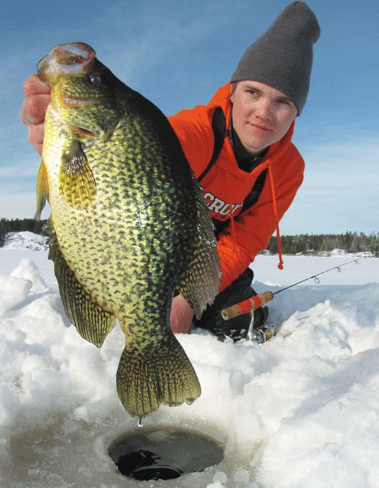 17 best images about crappie on pinterest lakes image for Best fishing in wisconsin