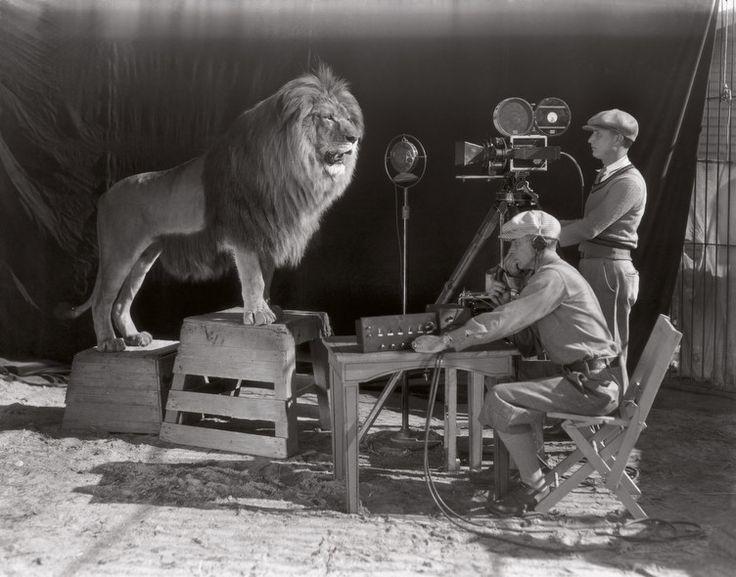 filmagem do famoso crédito da MGM com o leão que ruge no início dos filmes (1928).  © obvious: Ohttp://lounge.obviousmag.org/encruzilhada/2014/04/as-10-imagens-da-semana-do-admiravel-ao-factual.html#ixzz2yiKjPXeU