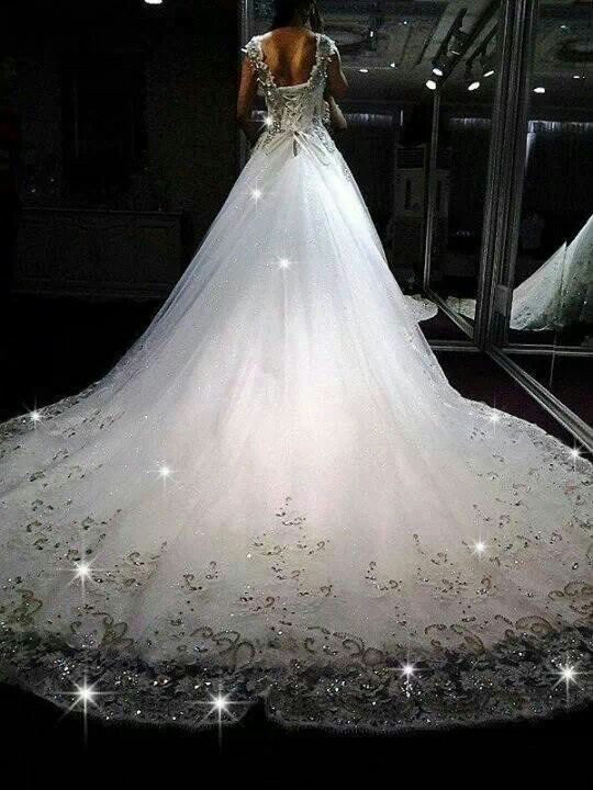 shiny shiny sparkly wedding dress