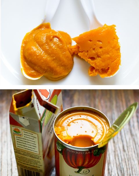 should you use canned vs. boxed pumpkin?Autumn Fall