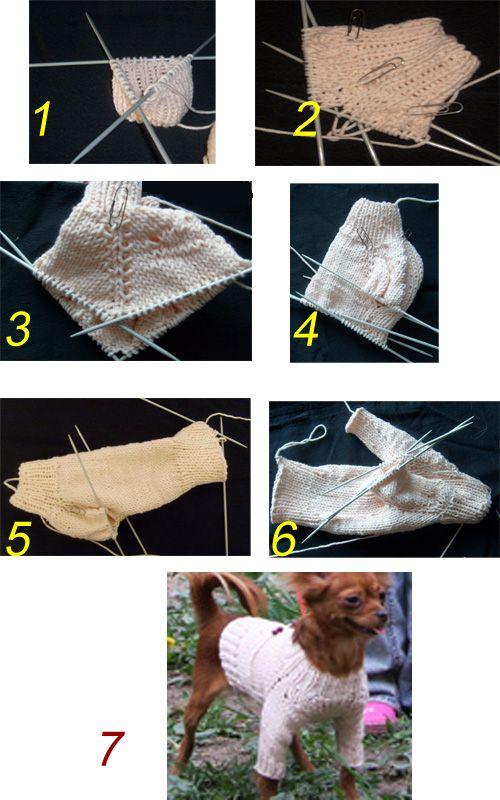 Схема и пошаговая инструкция вязки свитера для собак