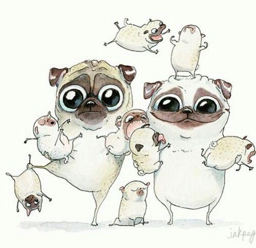 Mejores 220 imágenes de Dogs Pugs en Pinterest | Perritos, Animales ...