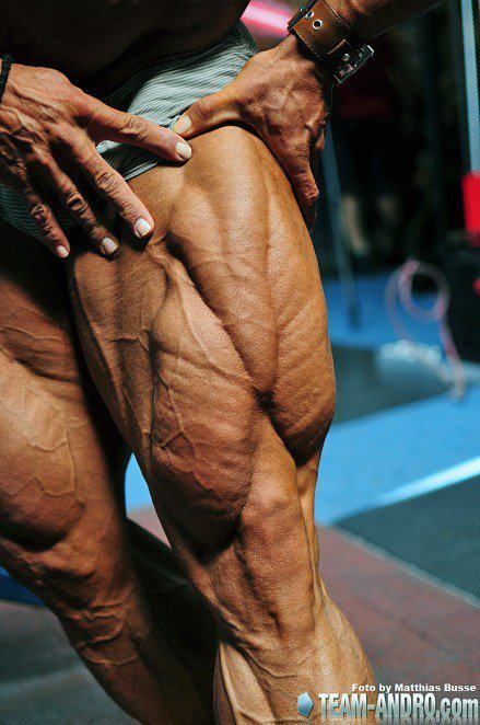 29 best images about Ripped Vascular Quads on Pinterest