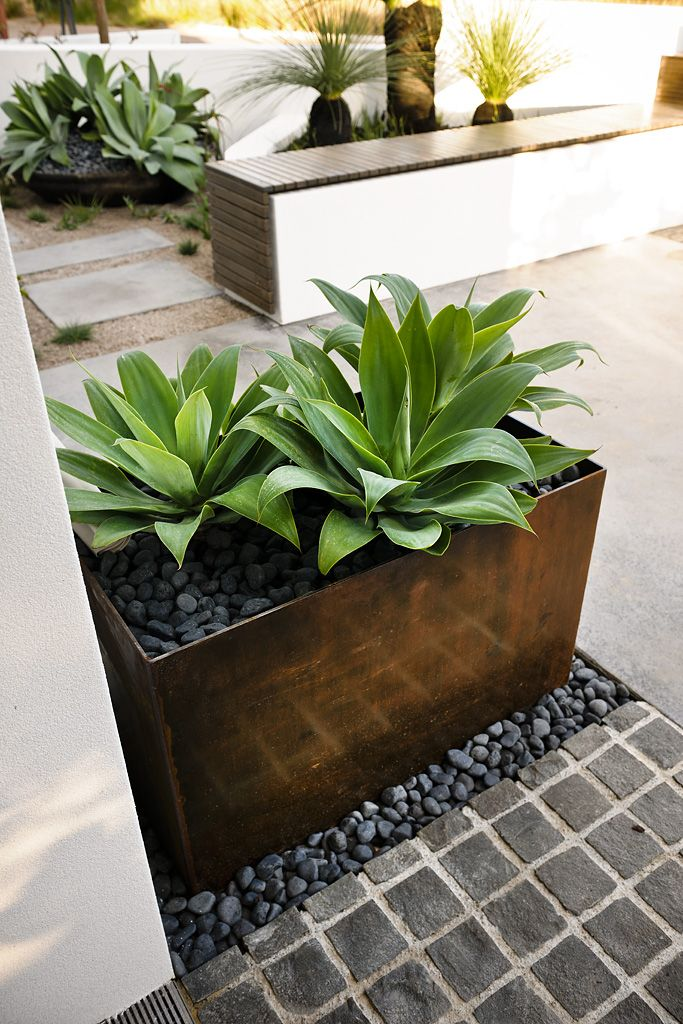 Webb & Brown-Neaves Swanbourne | Tim Davies Landscaping - copper planter box and bench seat