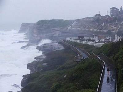 An early morning jogger braves the conditions at Waverley Cemetery, 29 January, 2013.