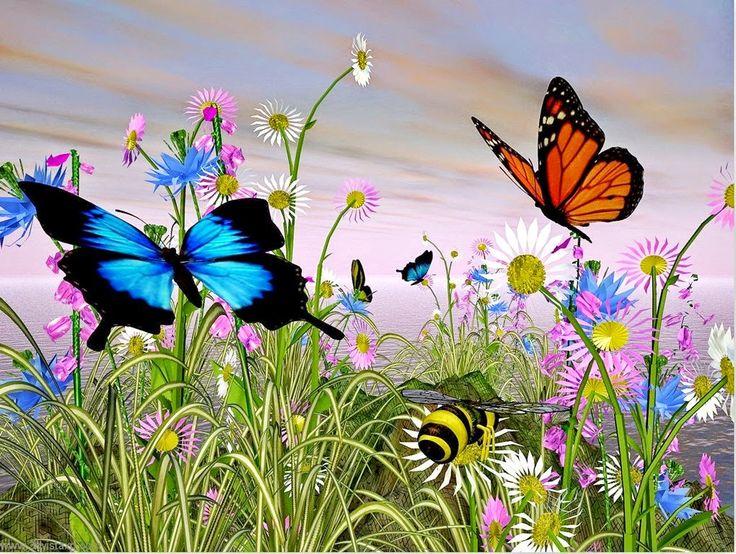 Fotografias De Mariposas Y Flores: Pintura Y Fotografía Artística : Cuadros De Flores Con