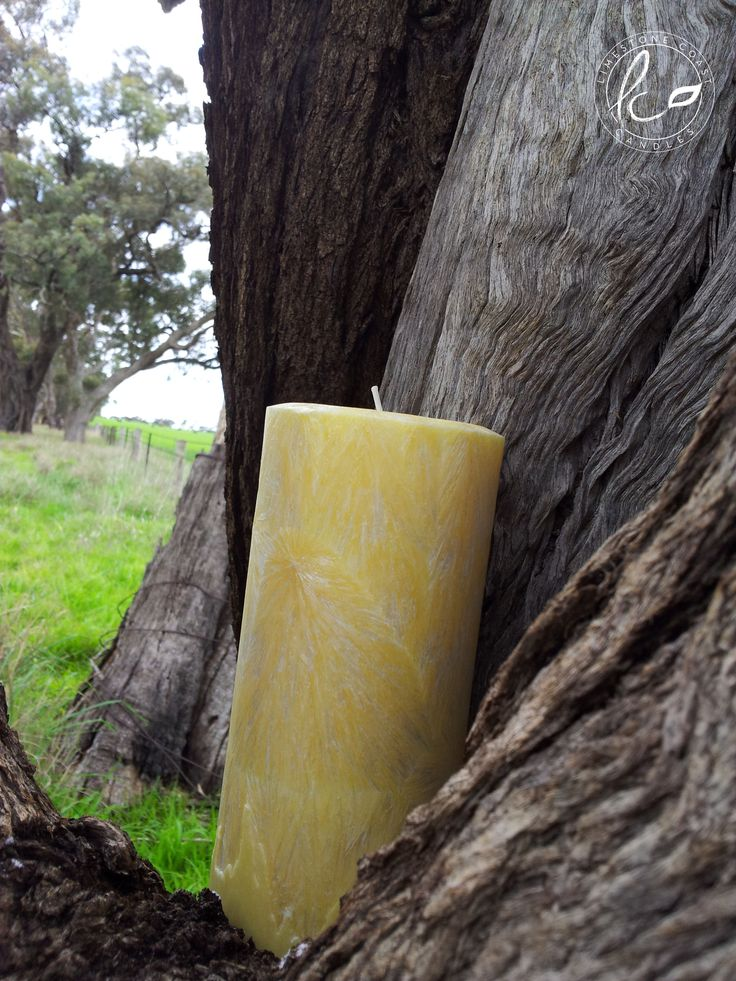 Japanese Honeysuckle- Large yellow textured pillar candle.
