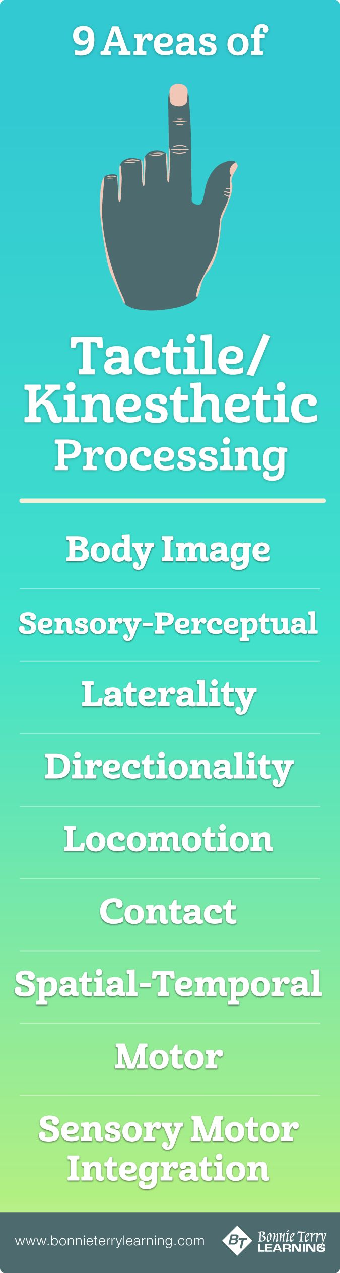 Areas of Tactile/Kinesthetic Processing
