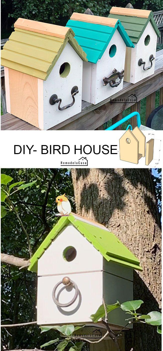 Summer S Off To A Good Start Diy Bird Houses Bird House Plans Free Bird Houses Diy Bird House Plans