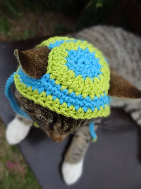 66 besten Crochet Pet Accessories Bilder auf Pinterest | Hunde ...