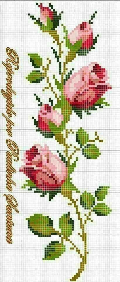 Rose cross stitch.