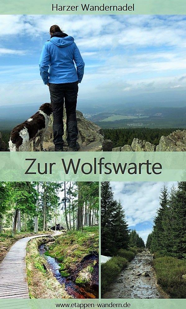 Harzer-Wandernadel – 2. Tour – Hinauf zur Wolfswarte