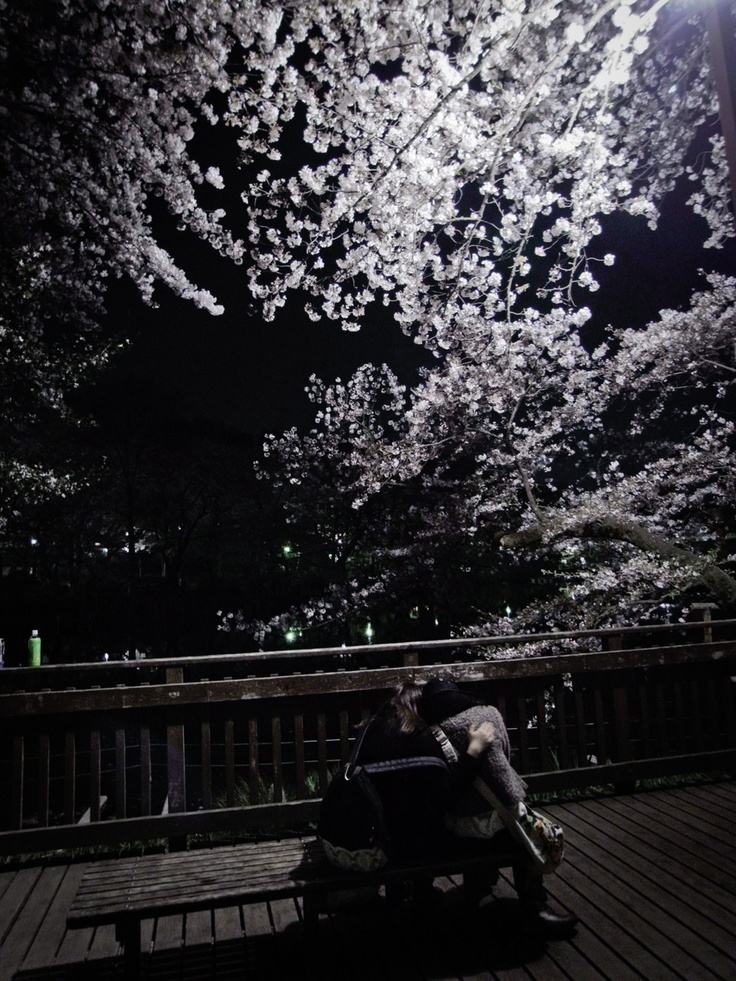 a photo i took of 2 young lovers in #inokashira park during #hanami last april 11'