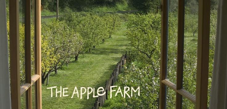 Philo Farm, Alexander Valley, CA