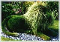 Topiary with a twist                                                                                                                                                                                 More