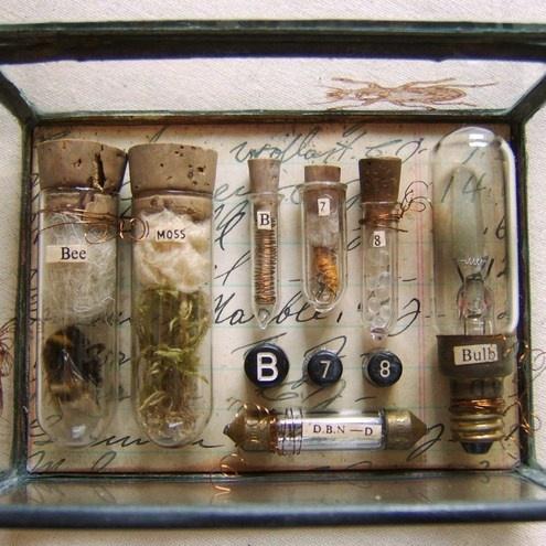 Mini Museum - Glass Box Assemblage - Folksy