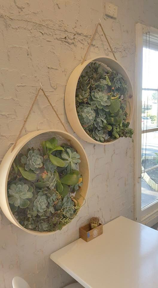 With a bit of chicken wire backing, this Kmart wall shelf becomes a totally stylish succulent garden! Check out all 20 of our favourite Kmart hacks EVER #kmart #kmarthack #kmarthacks