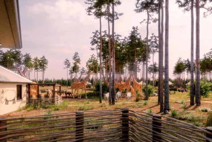 uitzicht-lodge-safari-resort-beeke-bergen.jpg