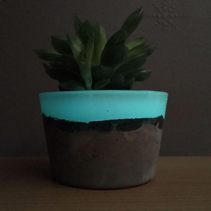 Concrete Planters (Glow in the dark)    eBay