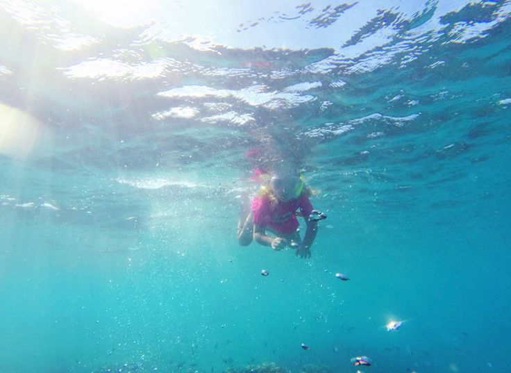 Maisies first time snorkelling off a reef
