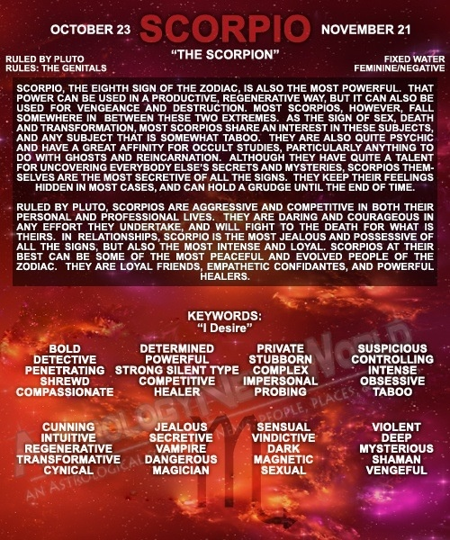 November 22nd Birthday Horoscope: 120 Best Proud To Be A Scorpio