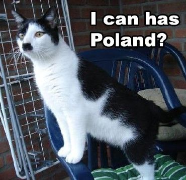 """I can has Poland?"" - Kitler Not my caption, but pinning because my son wrote a story in school about Hitler's diabolical cat, Kitler."